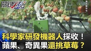 人力太慢!?科學家研發機器人採收蘋果、奇異果…還會挑選草莓!? 關鍵時刻 20171229-6 朱學恒 黃創夏