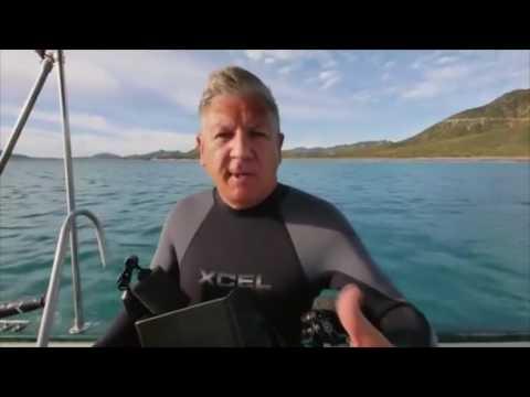 Cabo Pulmo:  world's most successful marine reserve