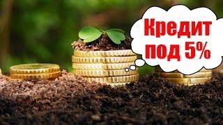 видео Кредитные запросы заемщика станут известны банкам