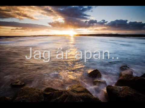 Olle Ljungström - En Apa Som Liknar Dig (With Lyrics)