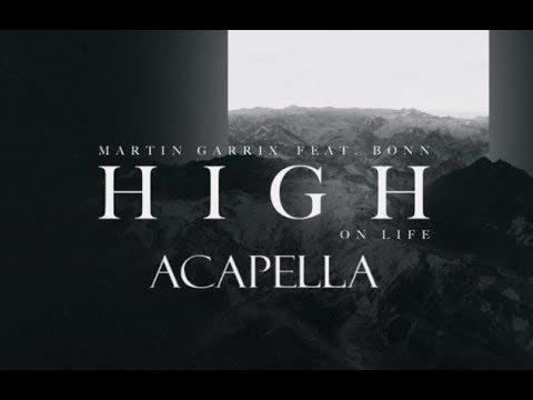 Martin Garrix feat. Bonn - High on Life (Acapella version)