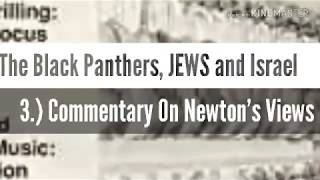 The Black Panthers, JEWS and Israel: 3)Commentary  On Newton's Views