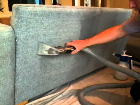Cleaning a dog-marked sofa