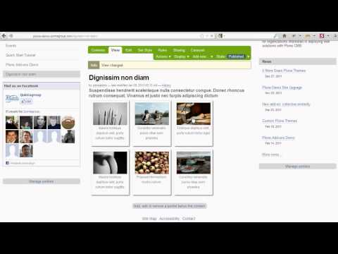 Plone Demo -  How to add content