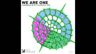 3 Access & You - We Are One (Jamie Baggotts Remix) (LOST138)