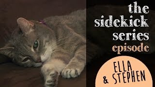 "Episode 3: Ella The Medically Needy Cat & Stephen - Featured By Jackson Galaxy ""the Cat Daddy"""