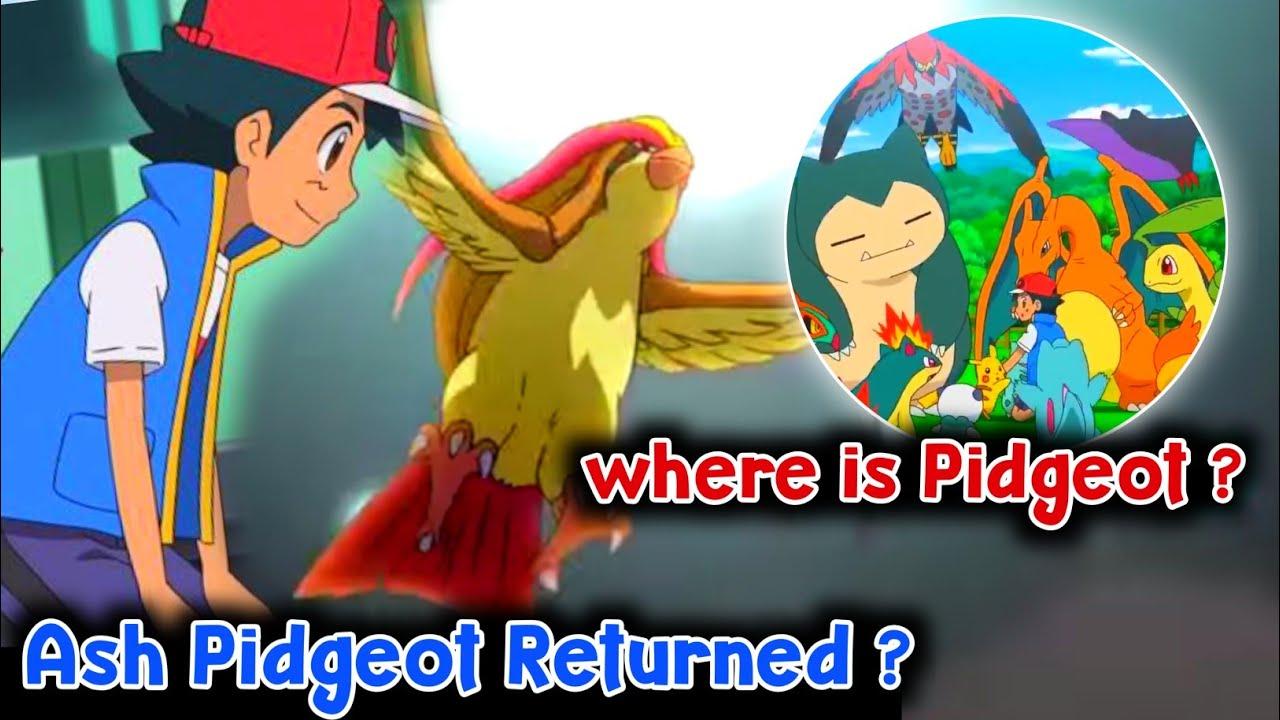 Ash Pidgeot Returned ? Future Of Ash Pidgeot in hindi    Where is Pidgeot in pokemon journyes hindi