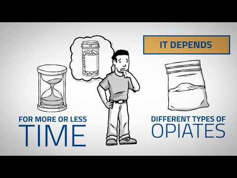 How Long Do Opiates Stay In Your System? (Urine, Blood, Saliva, Hair)