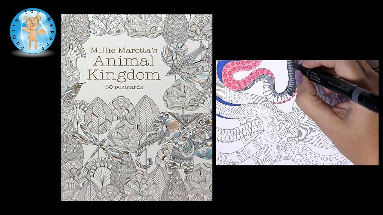 Millie Marottas Animal Kingdom 50 Postcards Adult