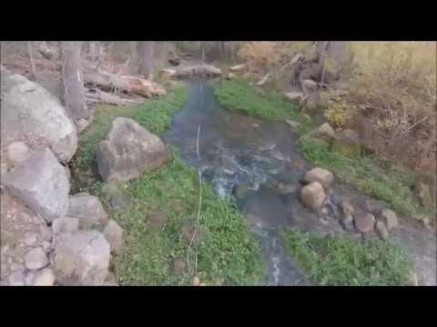 Fly Fishing Canyon Creek Az