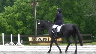 Diana Treimut Knight Hart First 1
