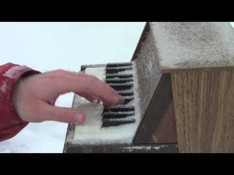 Jingle Bells on Toy Piano