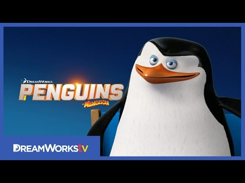 Meet Skipper | PENGUINS OF MADAGASCAR