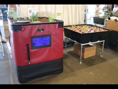 Endless fish vegetables with aquaponics prepper fest for Arizona aquaponics