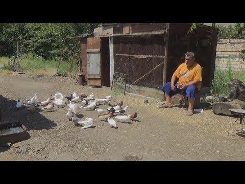 Карабах: как переселенцы выживают в селе на границе
