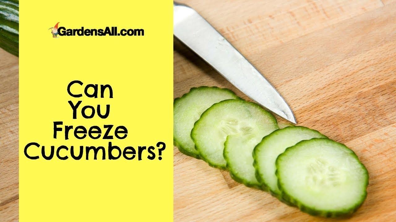 Can You Freeze Cucumbers?