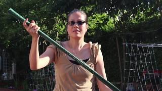 Cách làm giàn cho dây leo đơn giản đẹp nhưng hiệu quả ở Mỹ _  Tập 7