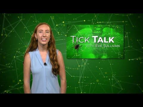 Ticktalk 3