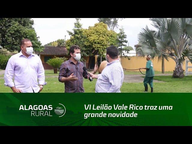 VI Leilão Vale Rico traz uma grande novidade para o mercado da vaquejada