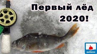 Первый лёд 2020! Странный лёд - зимняя рыбалка.