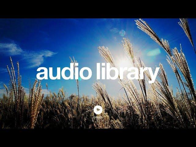 Light (Sting) – Kevin MacLeod (No Copyright Music)