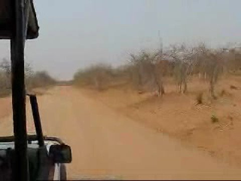 Botswana Land Safari