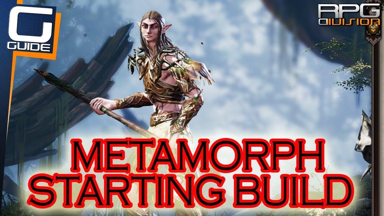 Divinity  Metamorph Build