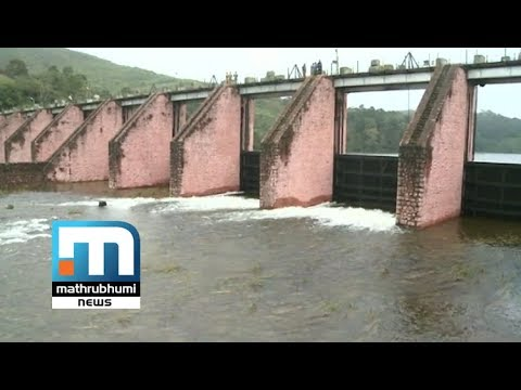 Mullaperiyar Dam Likely To Be Opened; Alert Issued| Mathrubhumi News