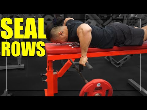 Exercise Index - Seal Rows