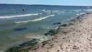 видео отдых на Киевском море