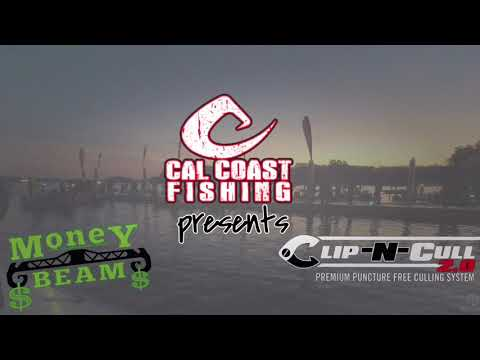 Mark Lassagne showing you how easy the #ClipNCull 2.0 and #TheMoneyBeam make culling fish.