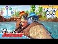 Puppy Dog Pals | Oh Snapper - Song 🎶 | Disney Junior UK