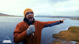 Apartment Sessions: Iceland - The Whale (Daniel Emond)