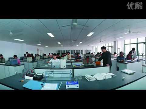 Introduction of Shandong Polytechnic University