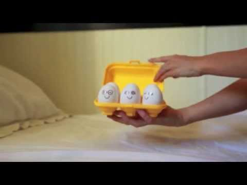 TOMY Educational Egg Crate Carton Toy Hide 'N Squeak Review