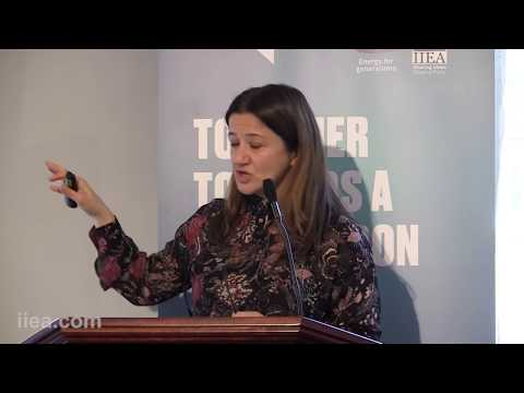 Anna Mengolini - The Social Dimension of Smart Grids