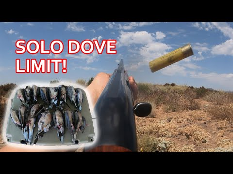 SoCal Solo Dove Hunt Limit