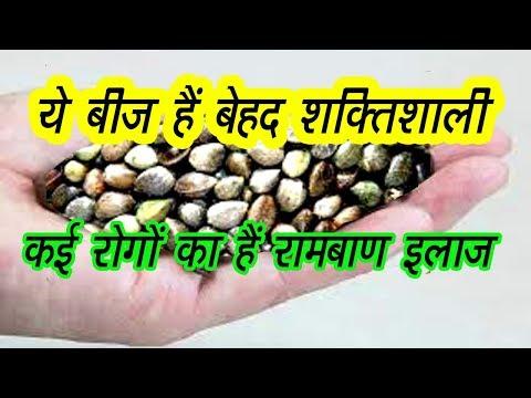 भांग बीज के 5 अदभुत फायदे | Top 5 Hemp Seeds Benefits in Hindi