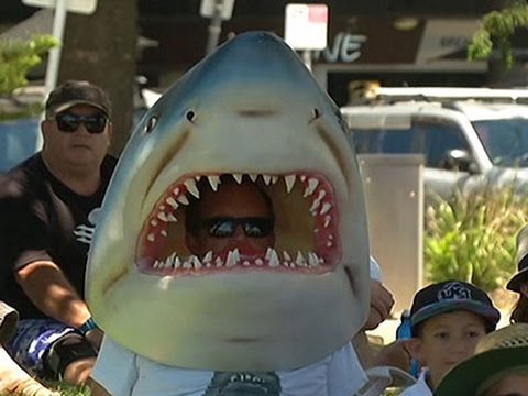 Activists Protest Australia Shark Control Policy