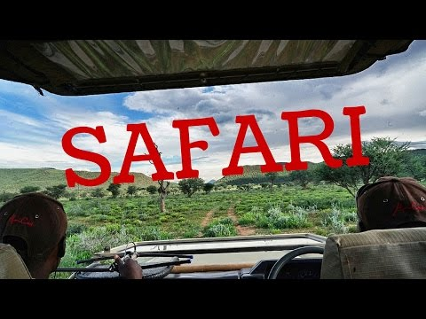 FMA Namibia ❘ HILFE! Ein Gepard!!!! ❘ Lilies Diary ❘