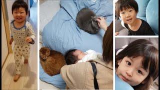 7日ぶりママ帰宅で2歳児大喜び!(猫達はリアクション薄かったw)