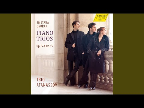 Piano Trio in G Minor, Op. 15: I. Moderato assai