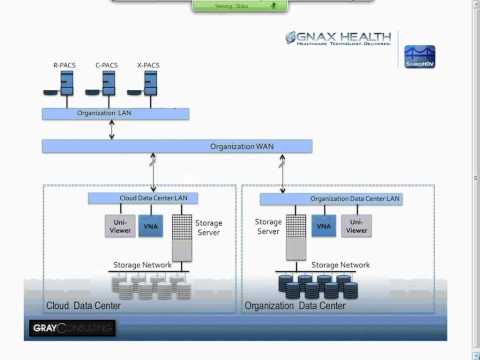HIMSS Webinar with Michael Gray: Breaking the VNA Entry Barrier