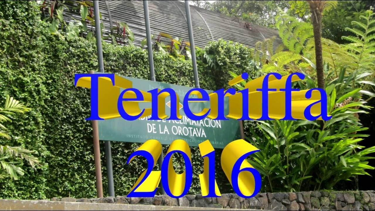 Teneriffa el bot nico sitio litre orchideen garten in puerto de la cruz youtube - El botanico puerto de la cruz ...