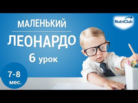Интеллектуальное развитие ребенка 7-8 месяцев по методике