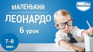 """Интеллектуальное развитие ребенка 7-8 месяцев по методике """"Маленький Леонардо"""". Урок 6"""