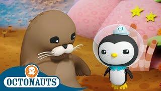 Octonauts - Protecting the Ocean | Cartoons for Kids | Underwater Sea Education