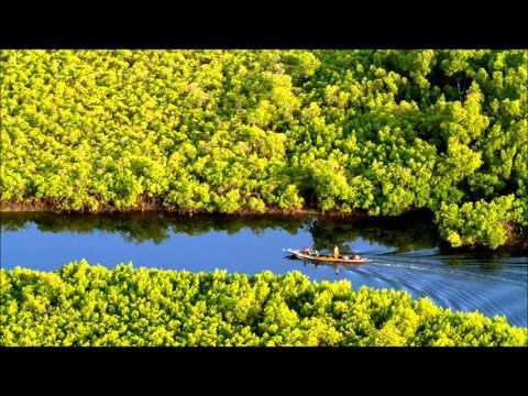 Delta de Sine Saloum (Senegal)