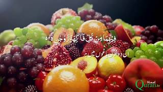 surah-rahman-with-urdu-hindi-translation-visual-effects-beautiful-quran-recitation