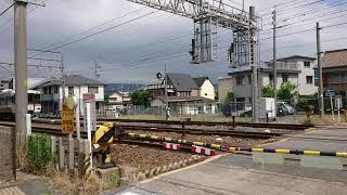 焼津ミナミマグロ満喫号 三河三谷中線発車